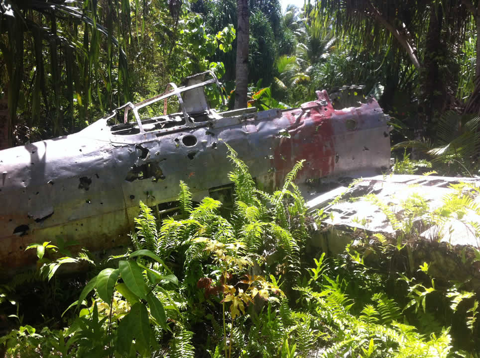 """<div class=""""meta image-caption""""><div class=""""origin-logo origin-image none""""><span>none</span></div><span class=""""caption-text"""">This image taken in March 2016 shows the remains of a Japanese Zero plane from WWII in the bushes on the remote island of Woleai, a tiny atoll in Micronesia. (The Exploratorium)</span></div>"""