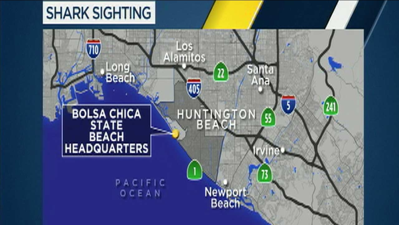 Part of Bolsa Chica State Beach was closed to surfers and swimmers after a shark was spotted.