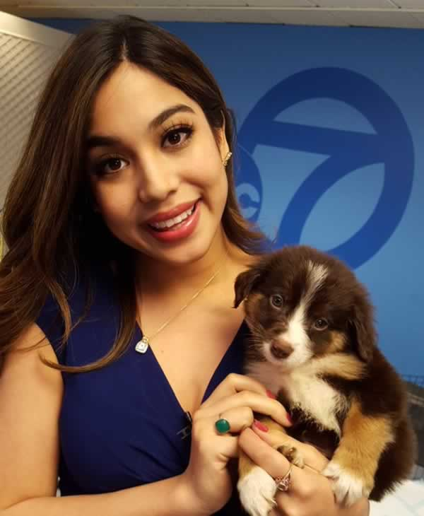 "<div class=""meta image-caption""><div class=""origin-logo origin-image none""><span>none</span></div><span class=""caption-text"">Natasha Zouves cuddles up with a cute San Francisco SPCA pup. (KGO-TV)</span></div>"