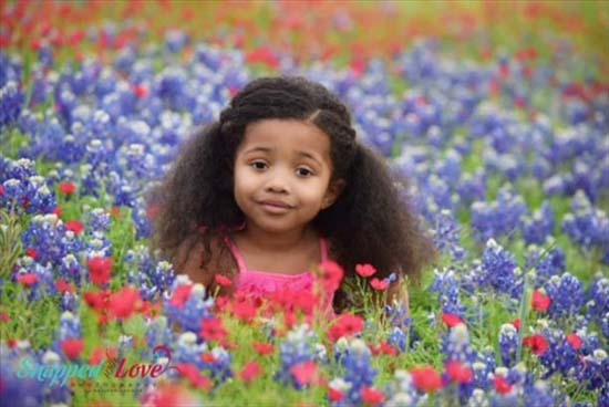 <div class='meta'><div class='origin-logo' data-origin='KTRK'></div><span class='caption-text' data-credit='Love Photography'>Share your bluebonnet photos and videos</span></div>