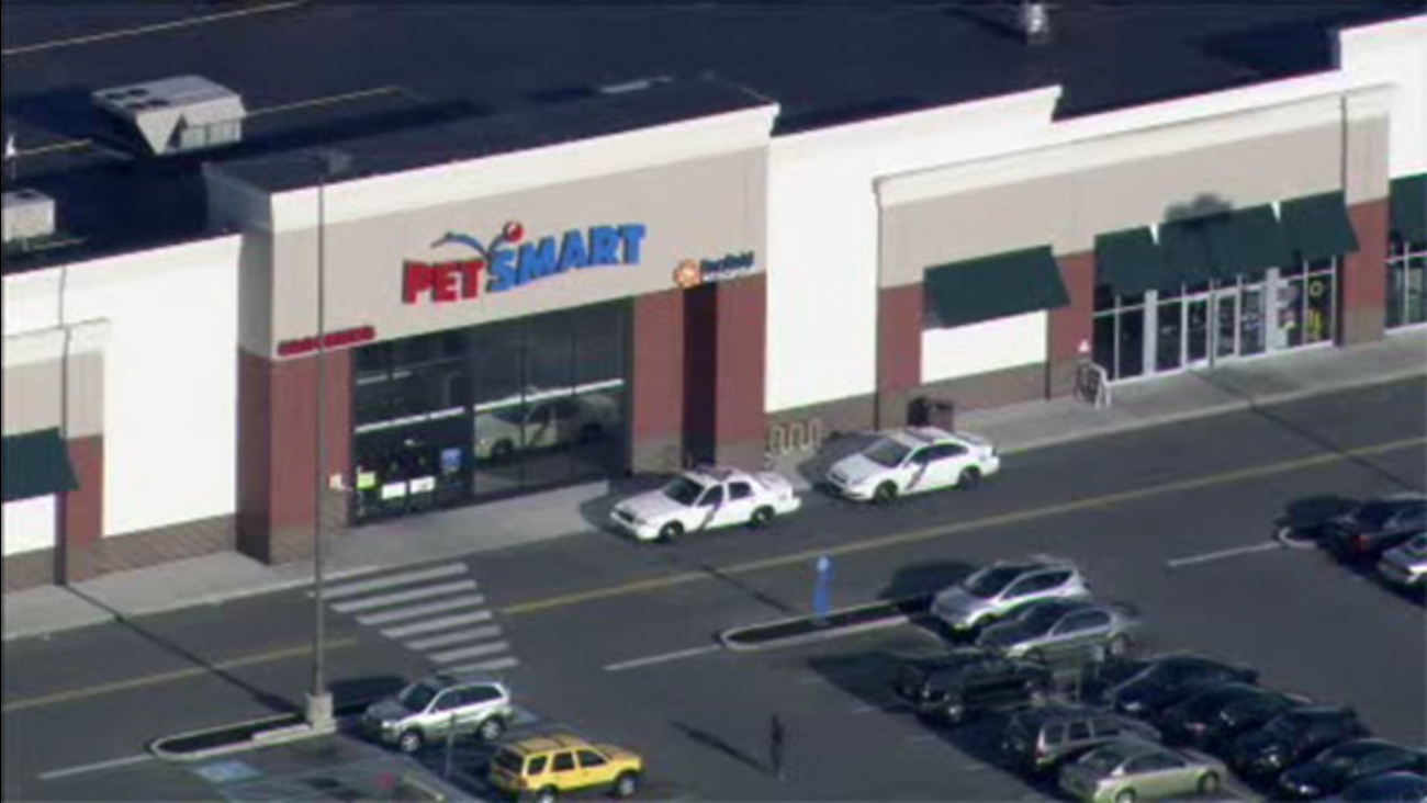 Police: Groomer attacked by Bullmastiff at PetSmart store