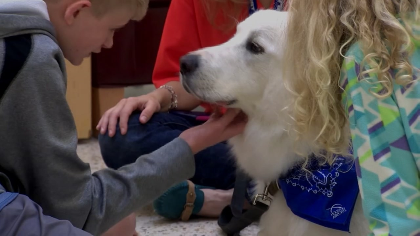 New Therapy Dog Program At Bush Intercontinental Offers