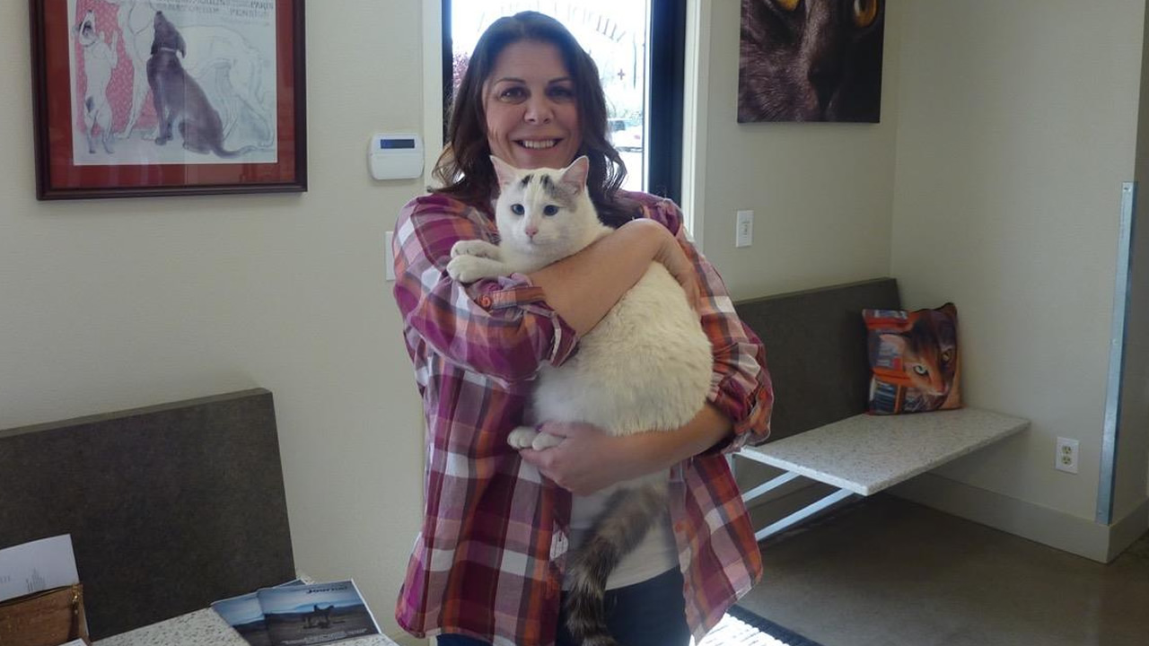 The Middletown Animal Hospital says a woman found her cat that's been missing since last September's devastating Valley Fire on March 23, 2016.