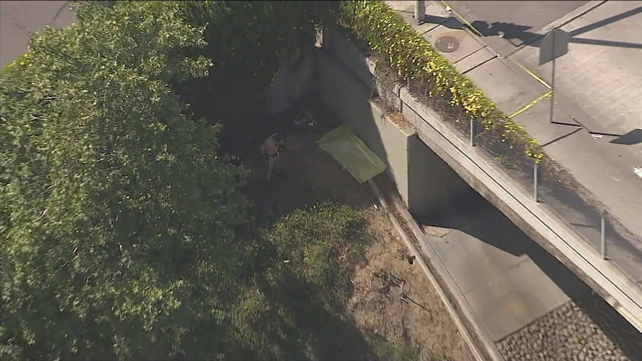 A woman's body was found on the side of the 110 Freeway in South Los Angeles.
