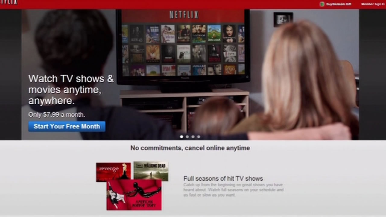 This image shows the Netflix website.