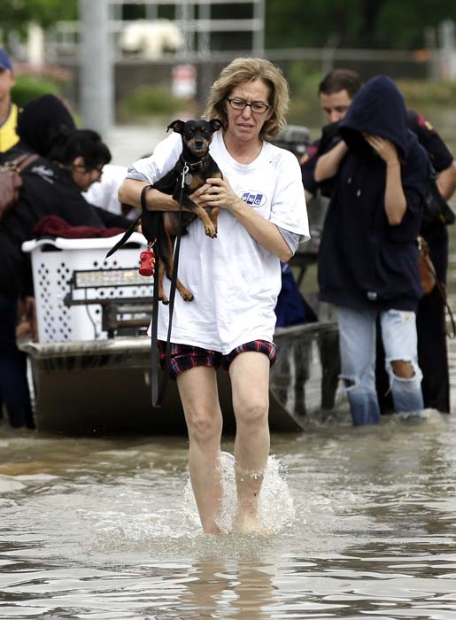 <div class='meta'><div class='origin-logo' data-origin='AP'></div><span class='caption-text' data-credit='AP Photo/David J. Phillip'>A woman carries a dog after being rescued from her flooded apartment complex</span></div>
