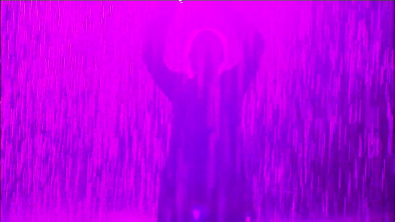 The Rain Room exhibit at the Los Angeles County Museum of Art was transformed to purple in honor of Prince.