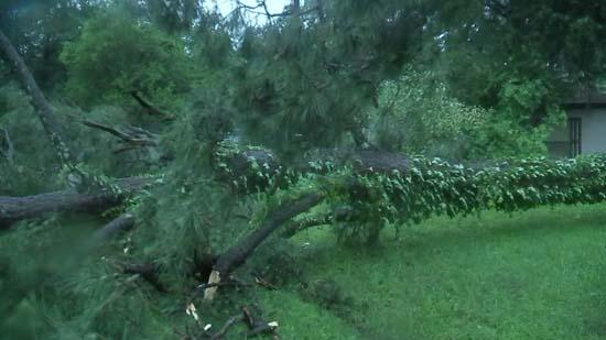 "<div class=""meta image-caption""><div class=""origin-logo origin-image ktrk""><span>KTRK</span></div><span class=""caption-text"">Storm damage seen across the Houston area following a round of severe storms on April 27, 2016.</span></div>"