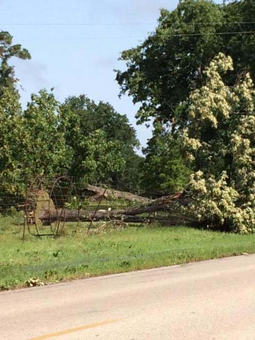 """<div class=""""meta image-caption""""><div class=""""origin-logo origin-image ktrk""""><span>KTRK</span></div><span class=""""caption-text"""">Damage seen across southeast Texas following severe storms (Viewer-submitted photo)</span></div>"""