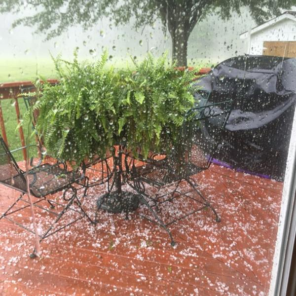 "<div class=""meta image-caption""><div class=""origin-logo origin-image wtvd""><span>WTVD</span></div><span class=""caption-text"">In Semora. Severe storms brought hail, winds to Central North Carolina on Thursday, April 28. (ABC11 Eyewitness)</span></div>"