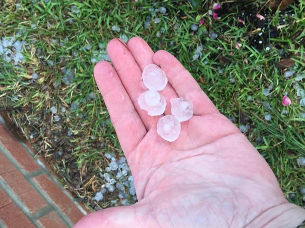 "<div class=""meta image-caption""><div class=""origin-logo origin-image wtvd""><span>WTVD</span></div><span class=""caption-text"">long lasting hail storm in Bunnlevel. (ABC11 Eyewitness)</span></div>"