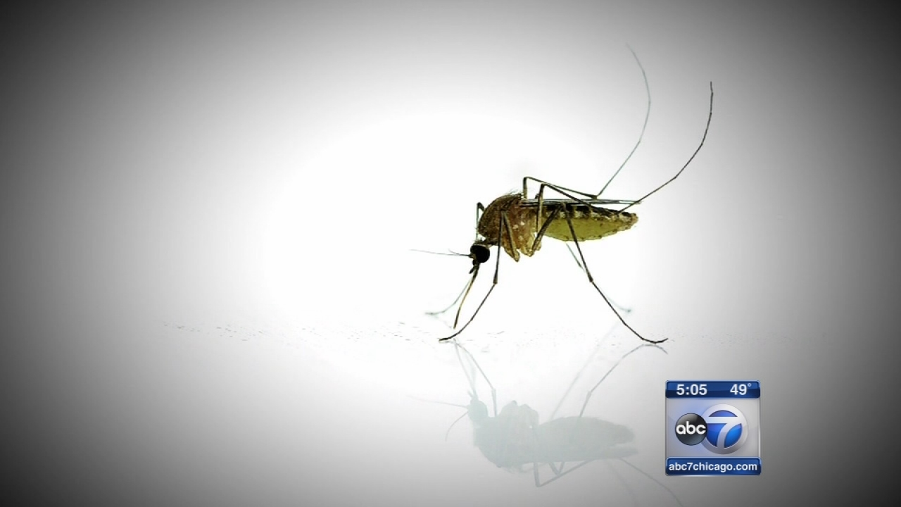 Commercial Zika test OK?d for use by doctors in U.S.