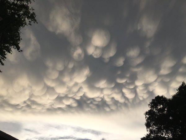 "<div class=""meta image-caption""><div class=""origin-logo origin-image wtvd""><span>WTVD</span></div><span class=""caption-text"">Cotton balls in the sky after the storm! (ABC11 Eyewitness)</span></div>"