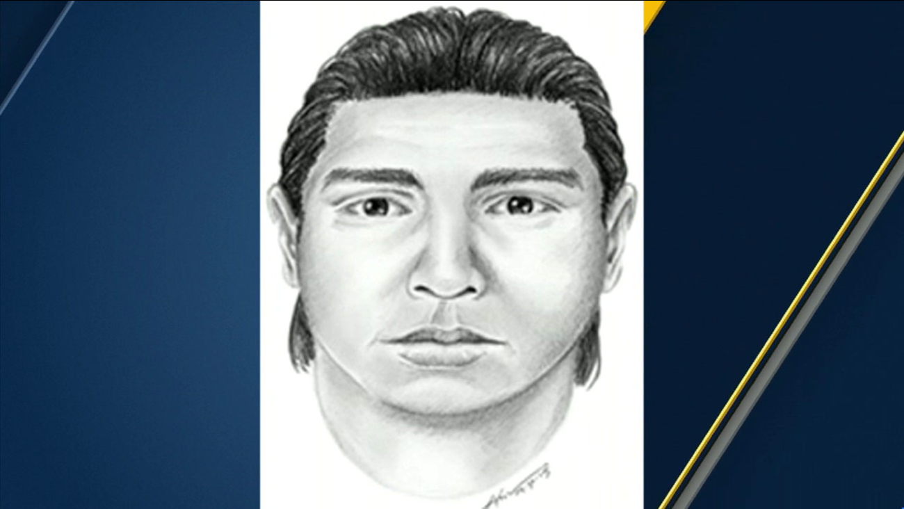 Police released this sketch of a suspect in a series of sexual assaults against elderly women in Northridge prior to the arrest of Danio Arturo Gonzalez, 32, of North Hollywood.