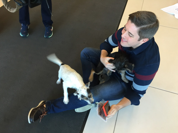 "<div class=""meta image-caption""><div class=""origin-logo origin-image wpvi""><span>WPVI</span></div><span class=""caption-text"">A pair of adorable puppies paid a visit to the 6abc studios Thursday morning.</span></div>"