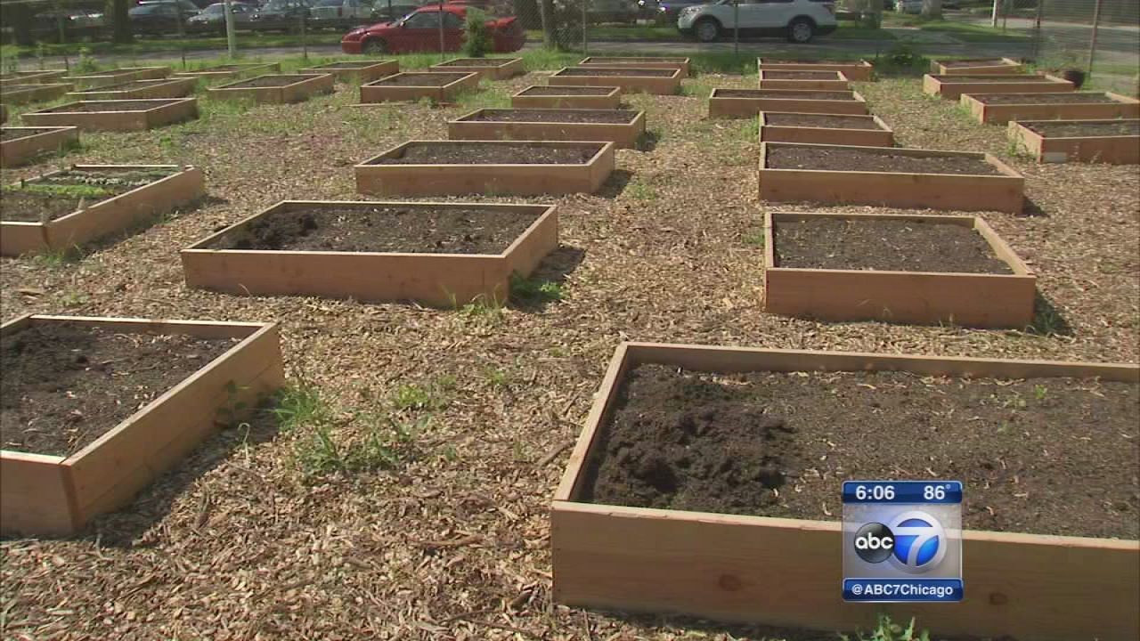 Chicago students turn parking lot into meditation garden for ...