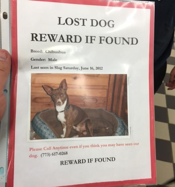 <div class='meta'><div class='origin-logo' data-origin='none'></div><span class='caption-text' data-credit='Chicago police'>A Chihuahua that has been missing since 2012 is back with his family.</span></div>