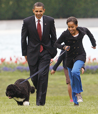 <div class='meta'><div class='origin-logo' data-origin='none'></div><span class='caption-text' data-credit='AP'>April 14, 2009, President Barack Obama watches as his daughter Malia walks their new dog Bo (AP Photo/Ron Edmonds, file)</span></div>