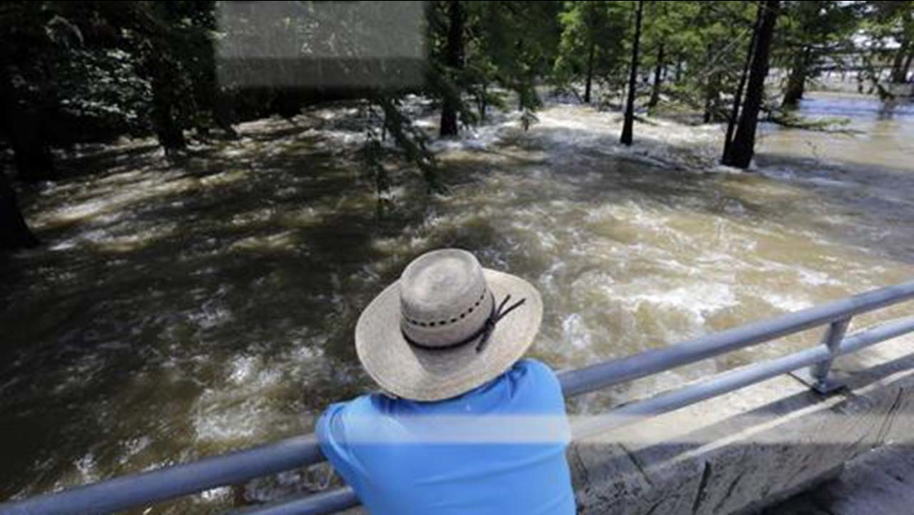 An onlooker watches the omal River rush by in Gruene, Texas, Thursday, June 2, 2016.