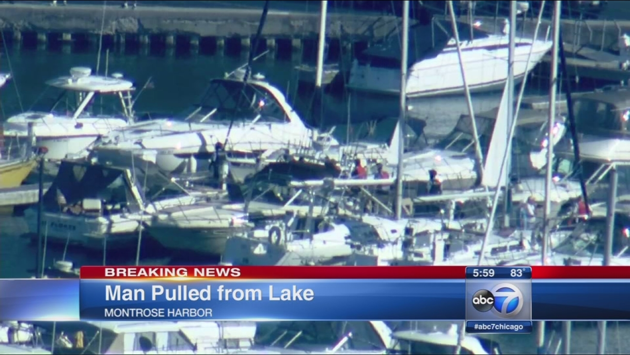 Man pulled from Montrose Harbor in critical condition