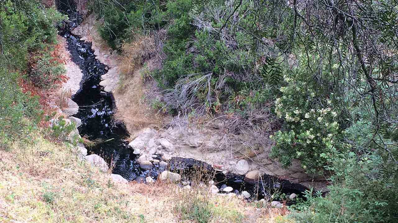 Crude oil is seen flowing in Ventura County after a pipeline burst  on Thursday, June 23, 2016.