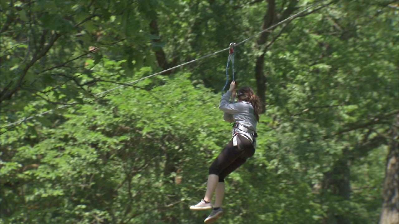 Go Ape zip line and treetop obstacle course in Western Springs.