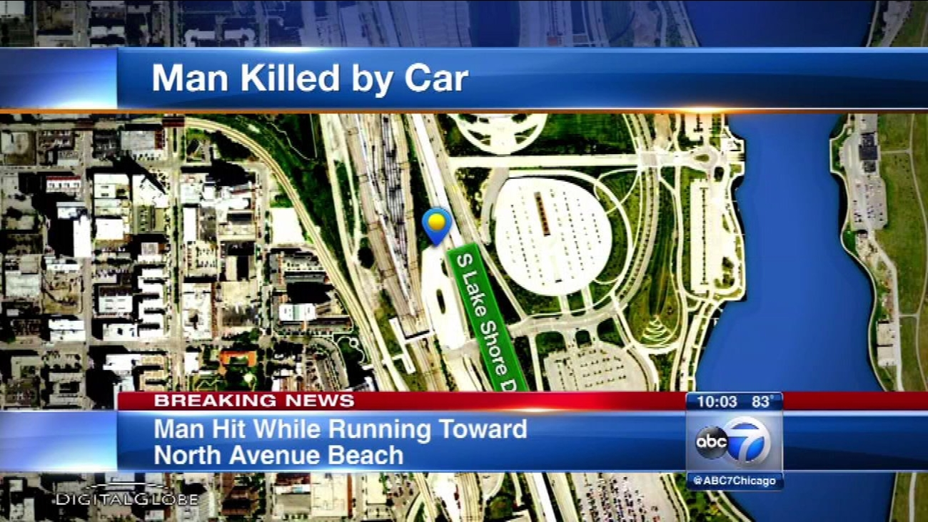 Man fatally struck by vehicle on Lake Shore Drive