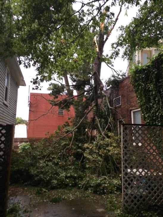 """<div class=""""meta image-caption""""><div class=""""origin-logo origin-image wtvd""""><span>WTVD</span></div><span class=""""caption-text"""">Pace Street near Person Street in Raleigh. (Katherine O'Connor Oden /ABC11 Eyewitness)</span></div>"""