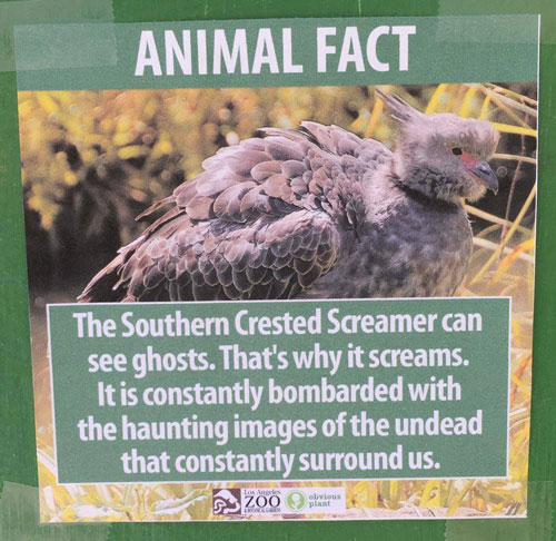 "<div class=""meta image-caption""><div class=""origin-logo origin-image none""><span>none</span></div><span class=""caption-text"">A poster displays a fake fact about Southern Crested Screamers at the Los Angeles Zoo. (Photo courtesy Jeff Wysaski)</span></div>"