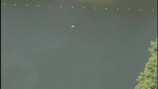 Naked man removed from in McGovern Lake in Hermann Park