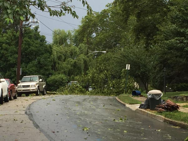 "<div class=""meta image-caption""><div class=""origin-logo origin-image wpvi""><span>WPVI</span></div><span class=""caption-text"">A downed tree in Havertown, Delaware County.</span></div>"