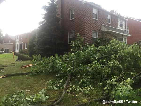 "<div class=""meta image-caption""><div class=""origin-logo origin-image wpvi""><span>WPVI</span></div><span class=""caption-text"">Action News viewer Adrian Hickman‏ sent in this photo of downed trees in Havertown, Pa.</span></div>"
