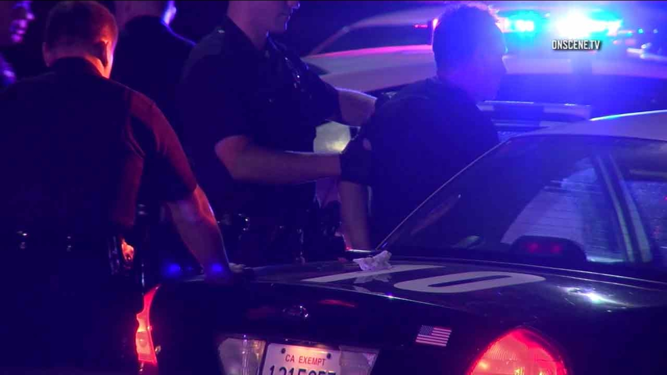 A suspect accused of fatally striking a person before leading police on a chase is taken into custody by police in Pacific Palisades on Saturday, July 30, 2016.