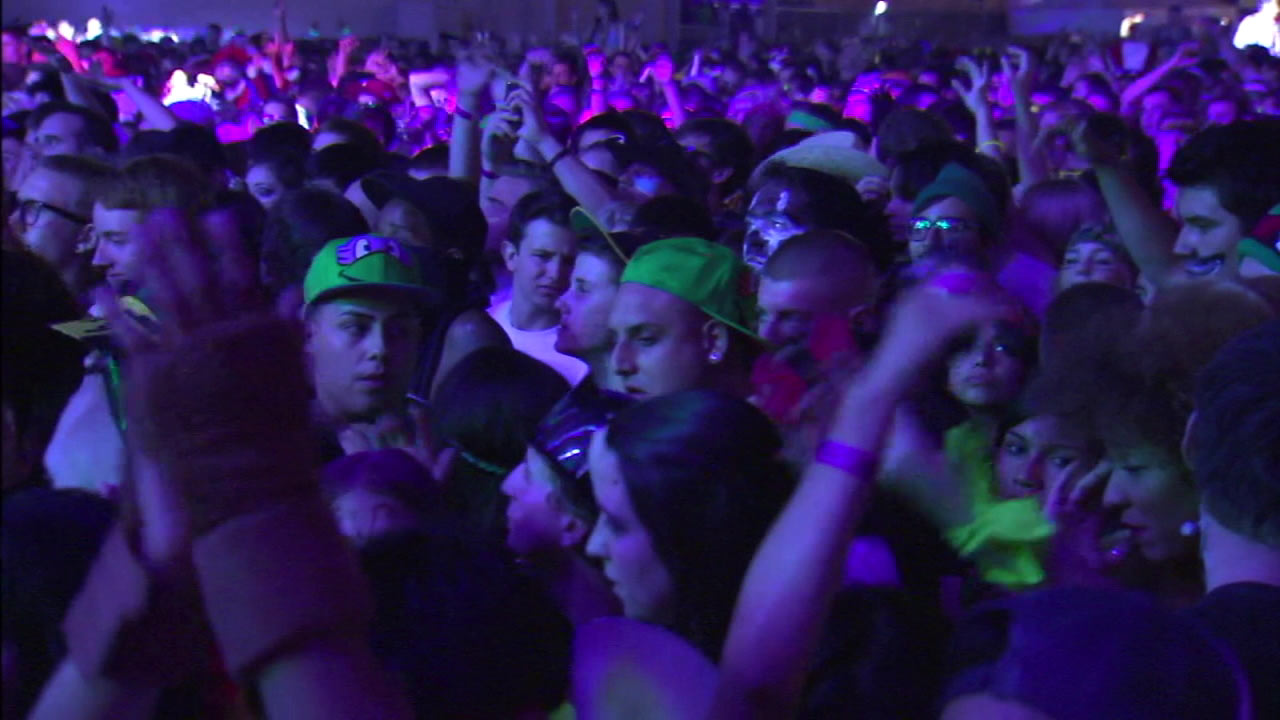 An image from HARD Summer Music Festival in 2015.
