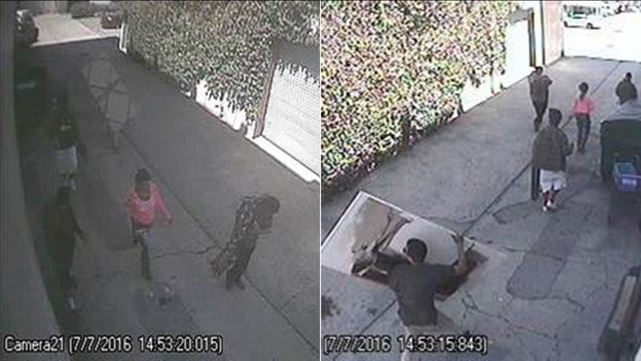 Surveillance cameras caught four men and a woman stealing a painting from a Los Angeles gallery on July 7, 2016.