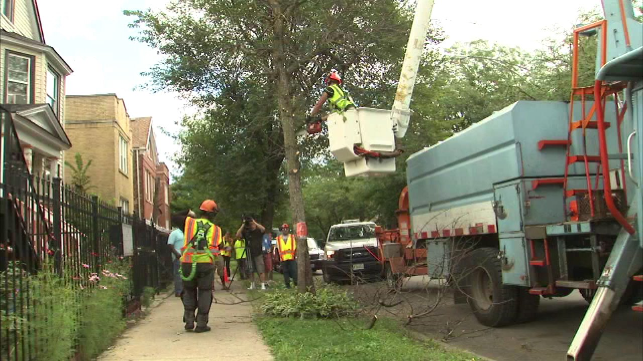 Humboldt Park clean-up