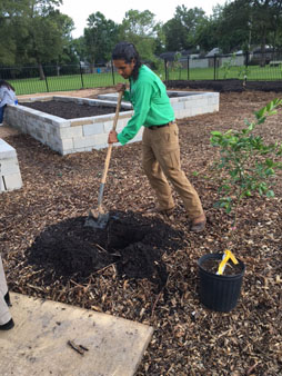 "<div class=""meta image-caption""><div class=""origin-logo origin-image none""><span>none</span></div><span class=""caption-text"">Herman Brown Park has some new additions</span></div>"