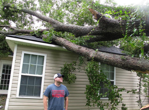 """<div class=""""meta image-caption""""><div class=""""origin-logo origin-image none""""><span>none</span></div><span class=""""caption-text"""">Nick Wykoff looks up at a burly pecan tree that fell on his home in Valdosta, Ga., Friday, Sept. 2, 2016. (AP)</span></div>"""