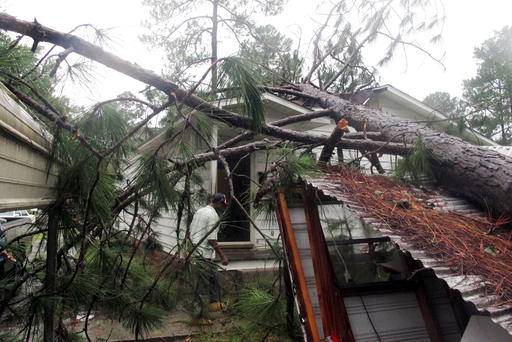 """<div class=""""meta image-caption""""><div class=""""origin-logo origin-image none""""><span>none</span></div><span class=""""caption-text"""">Melvin Gatlin Jr. walks to the back door of his father's house in Valdosta, Ga., beneath a pine tree that crashed onto the roof, Friday, Sept. 2, 2016. (AP)</span></div>"""