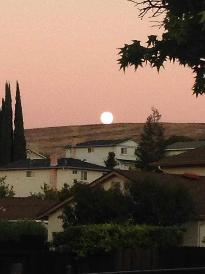 "<div class=""meta image-caption""><div class=""origin-logo origin-image none""><span>none</span></div><span class=""caption-text"">ABC7 viewers shared their photos of the harvest moon on Friday, September 16, 2016. (Photo submitted to KGO-TV by Paula D./Facebook)</span></div>"