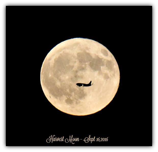 "<div class=""meta image-caption""><div class=""origin-logo origin-image none""><span>none</span></div><span class=""caption-text"">ABC7 viewers shared their photos of the harvest moon on Friday, September 16, 2016. This image was taken by Amarjeet K. in San Jose, Calif. (Photo submitted to KGO-TV by Amarjeet K./Facebook)</span></div>"