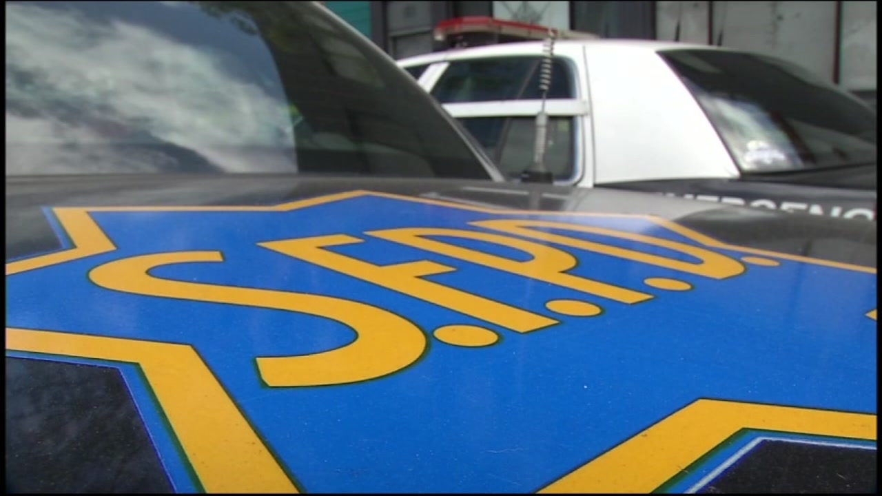 This undated image shows a San Francisco Police Department logo on a cop car.