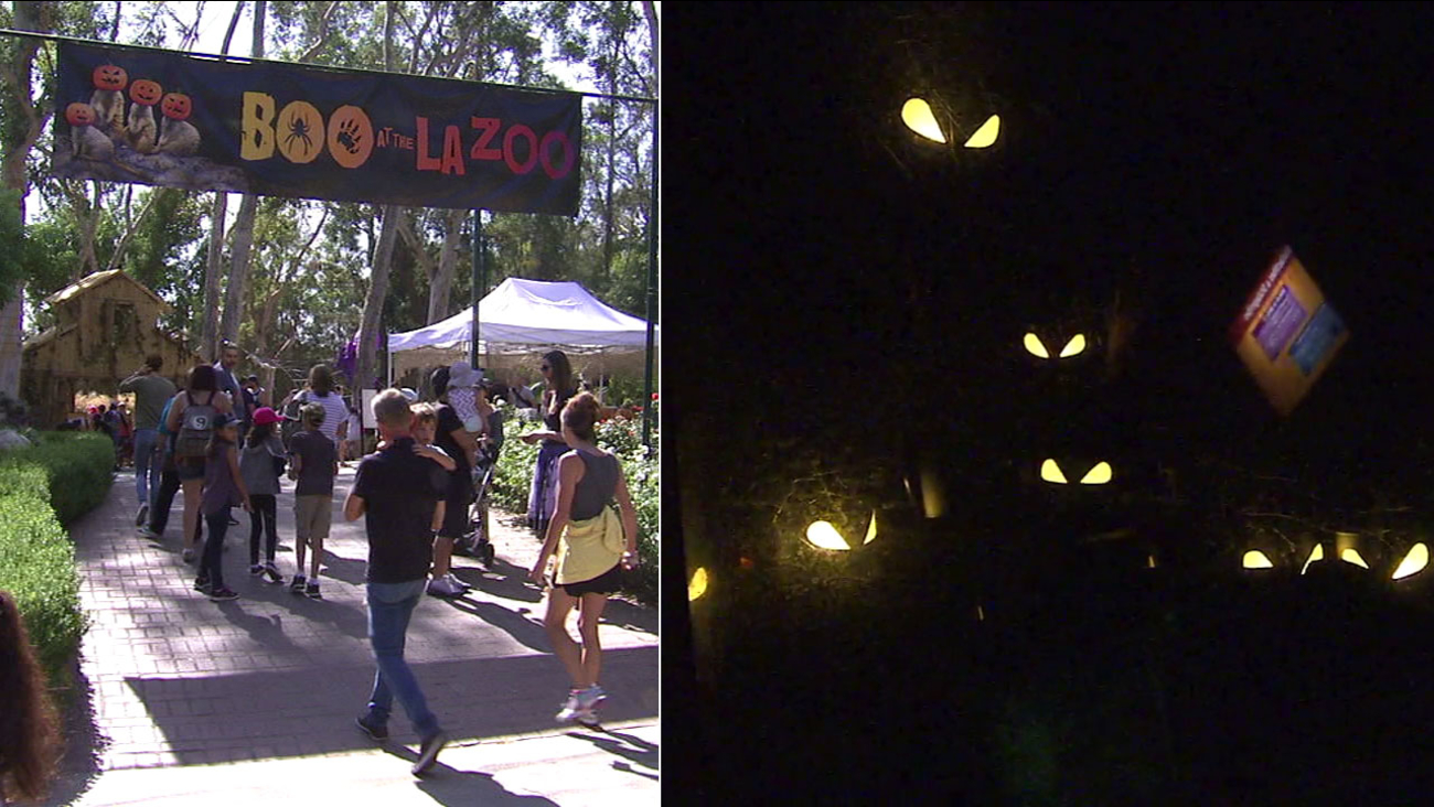 "People head into the ""Boo at the L.A. Zoo"" event at the Los Angeles Zoo in undated photos."
