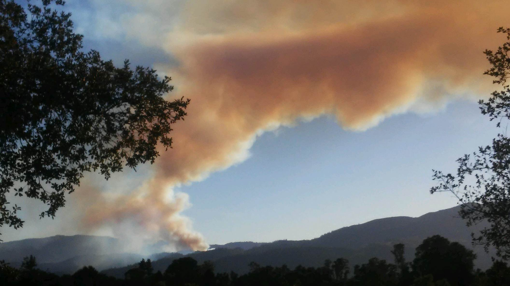 A brush fire has been reported in the Dry Creek area of Napa. The fire appears to be burning 30 acres and growing.