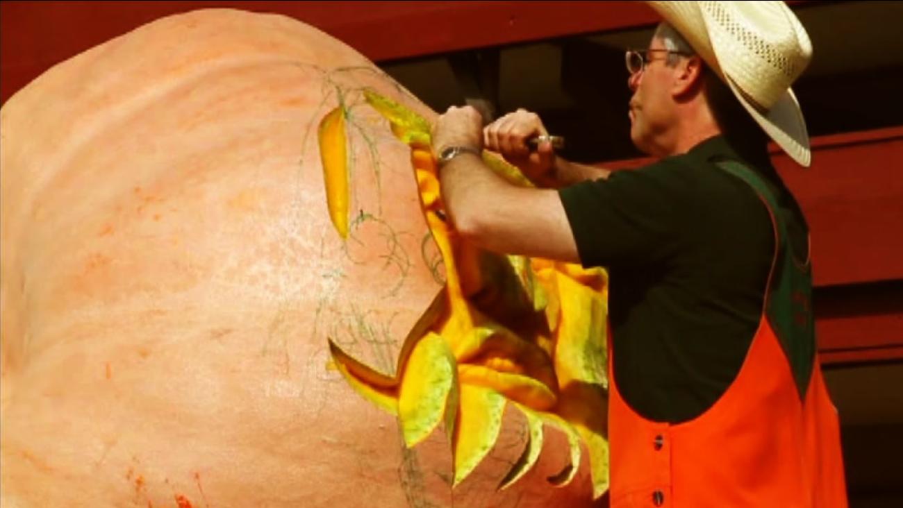 This Half Moon Bay Art & Pumpkin Festival begins on Saturday, October 15, 2016.