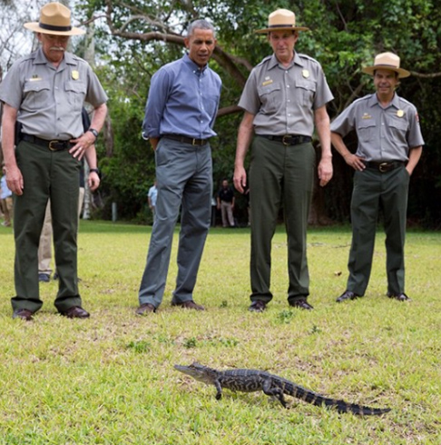 "<div class=""meta image-caption""><div class=""origin-logo origin-image none""><span>none</span></div><span class=""caption-text"">A cute and humorous photo of President Obama looking at a tiny alligator in Everglades National Park in 2015. (Pete Souza, Chief Official White House Photographer)</span></div>"