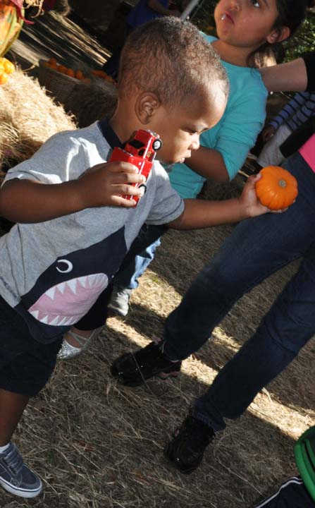 "<div class=""meta image-caption""><div class=""origin-logo origin-image ktrk""><span>KTRK</span></div><span class=""caption-text"">The Houston Zoo celebrates Halloween at Zoo Boo 2016 (KTRK/Amanda Cochran)</span></div>"