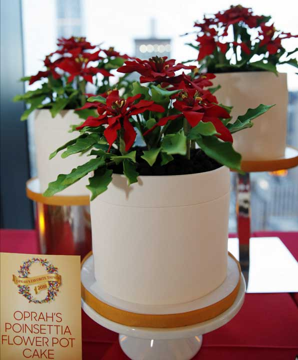 """<div class=""""meta image-caption""""><div class=""""origin-logo origin-image ap""""><span>AP</span></div><span class=""""caption-text"""">Oprah's Poinsettia Flower Pot Cake looks like a holiday plant, but is actually a chocolate cake with vanilla mousse. (AP Photo/Kathy Willens)</span></div>"""