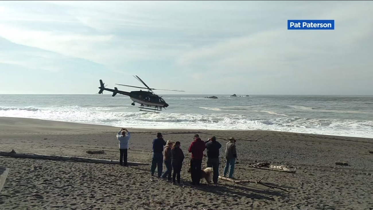 This image shows a rescue at Goat Rock Beach in Jenner, Calif. on Nov. 24, 2016.