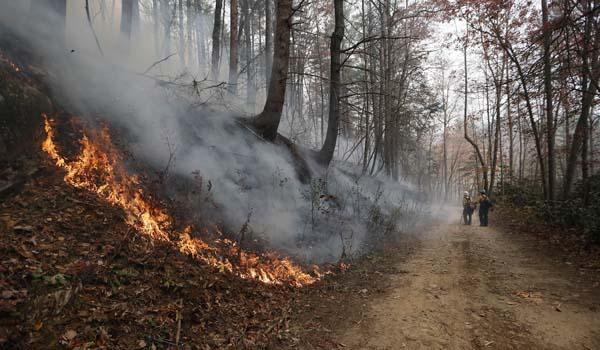 <div class='meta'><div class='origin-logo' data-origin='AP'></div><span class='caption-text' data-credit='AP Photo/John Bazemore'>Firefighters walk down a dirt road a wildfire burns a hillside Tuesday, Nov. 15, 2016, in Clayton, Ga.</span></div>